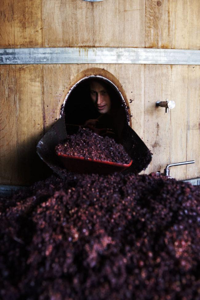 vignerons à Morgon Fronsac