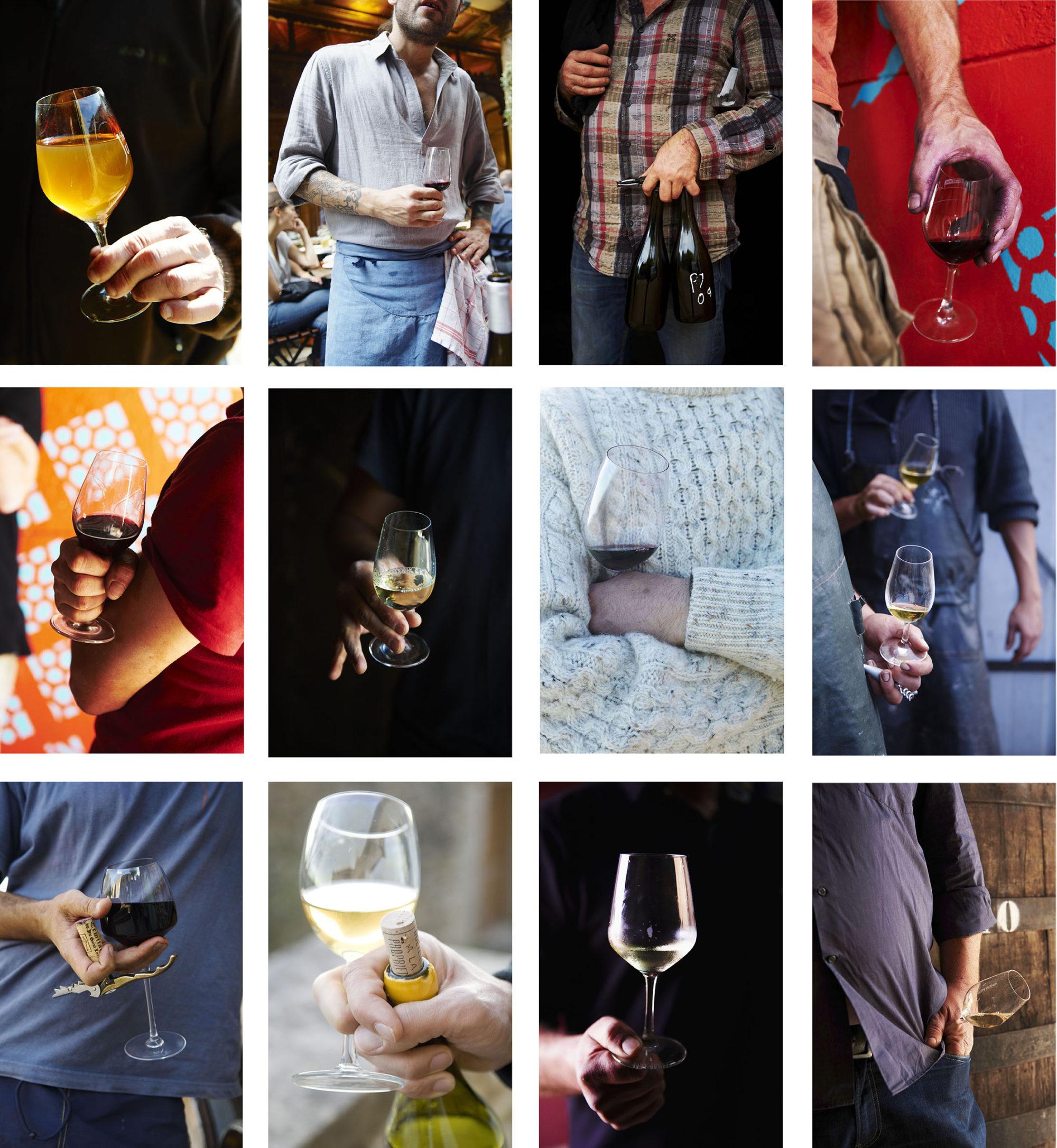 le Champagne bio les vendanges